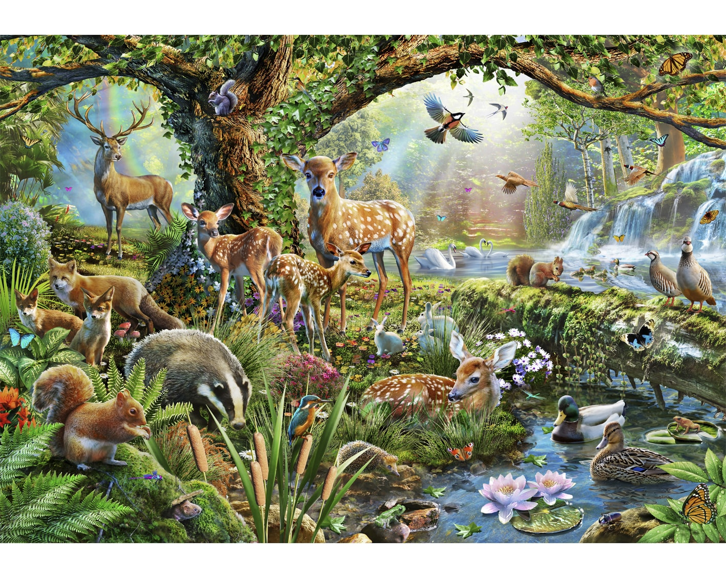 Image result for woodland picture with animals